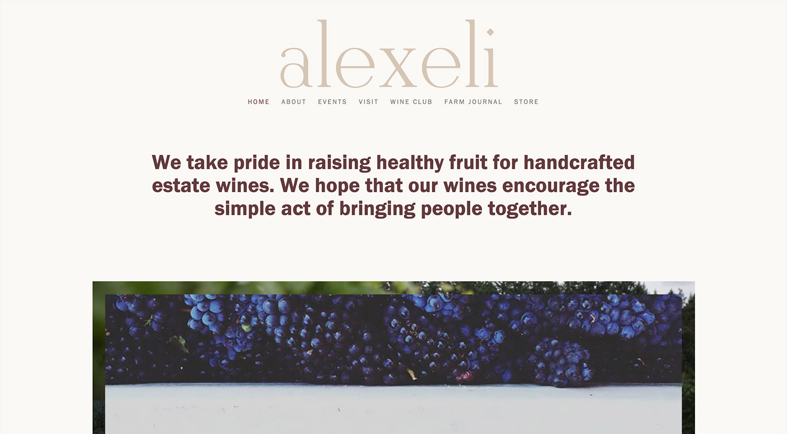 The website for Alexeli